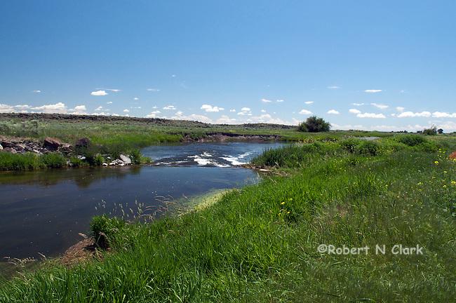 Lower Silver Creek near Carey, Idaho