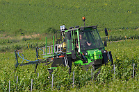 A green vineyard tractor spraying the vines on a slope, the village of Hautvillers in Vallee de la Marne, Champagne, Marne, Ardennes, France