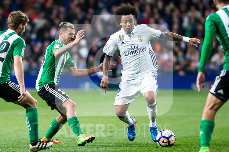 Dani Ceballos of Real Betis competes for the ball with Marcelo Vieira of Real Madrid  during the match of Spanish La Liga between Real Madrid and Real Betis at  Santiago Bernabeu Stadium in Madrid, Spain. March 12, 2017. (ALTERPHOTOS / Rodrigo Jimenez)