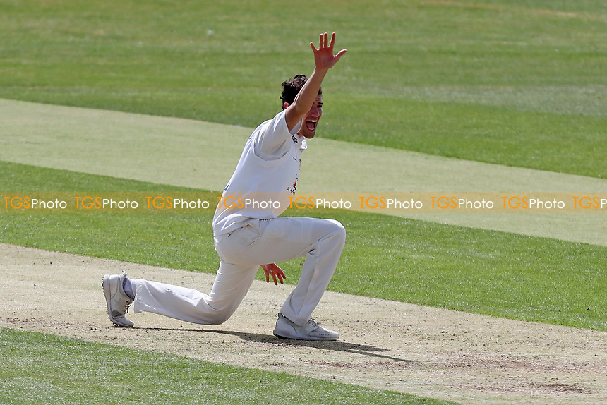 Joe Ellis-Grewal appeals for a wicket during Essex CCC 2nd XI vs Surrey CCC 2nd XI, Second XI Championship Cricket at Billericay Cricket Club on 16th May 2017
