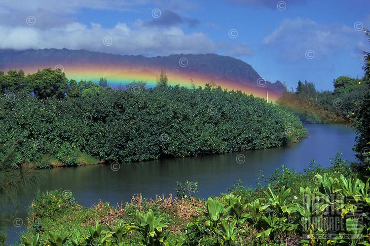 "Rainbow at Hanalei River, with """"Bali hai"""" mountain (Makana) in the background, Kauai north shore morning."