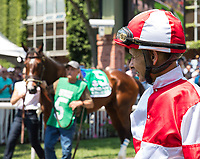 ELMONT, NY - JUNE 10: Jockey Mike Smith watches Songbird #5 walk in the paddock before winning the Ogden Phipps Stakes on Belmont Stakes Day at Belmont Park on June 10, 2017 in Elmont, New York (Photo by Jesse Caris/Eclipse Sportswire/Getty Images)