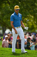 Rafael Cabrera Bello (ESP) looks over his chip on 11 during Rd4 of the 2019 BMW Championship, Medinah Golf Club, Chicago, Illinois, USA. 8/18/2019.<br /> Picture Ken Murray / Golffile.ie<br /> <br /> All photo usage must carry mandatory copyright credit (© Golffile | Ken Murray)
