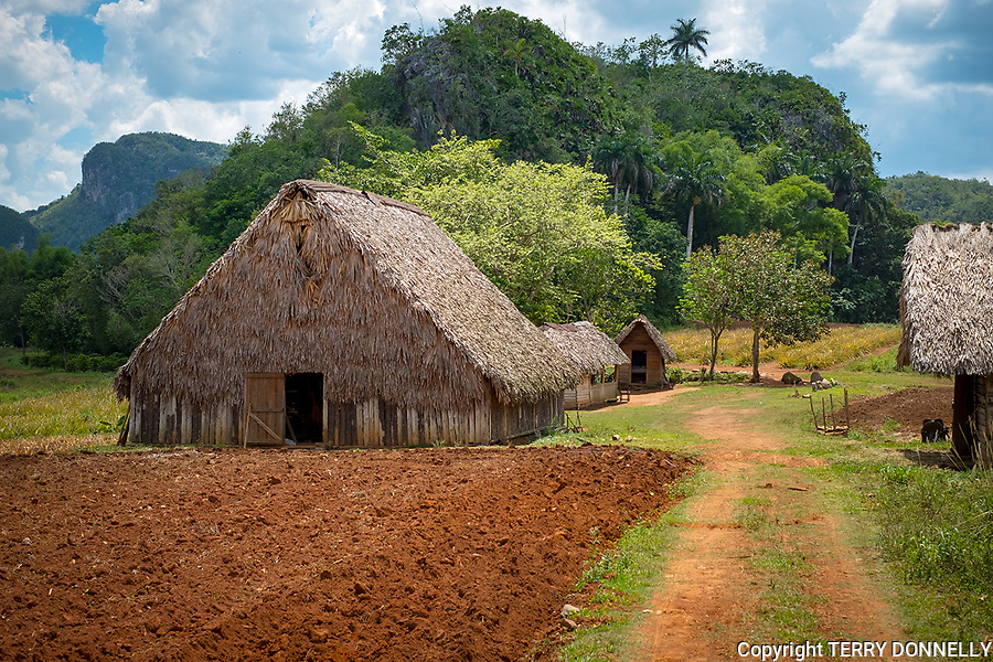 Vinales, Cuba:<br /> Farmsite and tobacco barn in the Sierra Rosario range, mojotes (limestone formations) and agricultural valley. Unesco World Heritage  Site