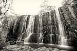 Guide Falls, Tasmania