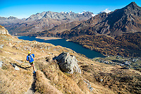Trail running along the Silsersee, near Maloja, in the Engadin, during the fall colors. Switzerland