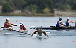 MAY 28, 2016: Bates College rowers startle a goose during the Dlll - ll Eights Grand Final held at Lake Natoma in Gold River, Ca. on Saturday May 28, 2016