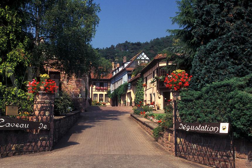France, Alsace, Eguisheim, Haut-Rhin, Europe, wine region, Wine house in the village of Equisheim in the wine region of Alsace.