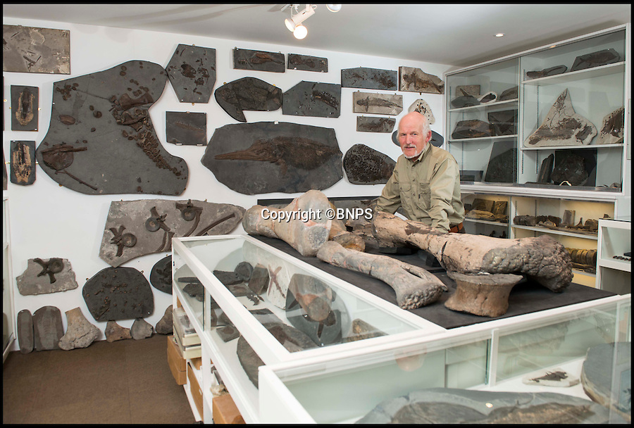 BNPS.co.uk (01202 558833)<br /> Pic: TomWren/BNPS<br /> <br /> Steve Etches in his garage where he keeps his fossil collection.<br /> <br /> A prolific fossil hunter who has spent 30 years digging up 2,500 Jurassic specimens has spoken of his immense pride days ahead of the opening of a £5m museum built in his honour. <br /> <br /> The results of plumber Steve Etches' lifelong fossil hunting hobby will be displayed at the purpose-built Kimmeridge Museum. <br /> <br /> The 'Etches Collection', which exhibits fossils from 150 million years ago, has been described as the finest single assortment of Late Jurassic age fossils ever assembled in Britain. <br /> <br /> A virtual aquarium and interactive exhibition, surrounded by creatures long-since extinct, will bring to life incredible stories from the Jurassic period. <br /> <br /> The facility will also incorporate a dynamic research centre and visitors will be able to watch Mr Etches as he cleans and conserves new finds within his workshop. <br /> <br /> Incredibly, the museum is only able to incorporate 10% of Mr Etches' enormous collection, with the remaining specimens to be rotated over the years.