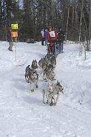 Sam Deltour Anchorage Start Iditarod 2008.