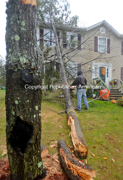 NAUGATUCK, CT-29 OCTOBER 2012--102912JS04--Justin Campbell was one of the neighbors to help cut a tree that had fallen on Rita Lima's Woodcrest Circle home in Naugatuck on Monday. `.Jim Shannon Republican-American