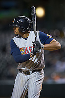 Daniel Fields (29) of the Toledo Mud Hens at bat against the Charlotte Knights at BB&T BallPark on April 27, 2015 in Charlotte, North Carolina.  The Knights defeated the Mud Hens 7-6 in 10 innings.   (Brian Westerholt/Four Seam Images)