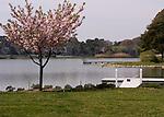 Lake.  Rehoboth Beach, Delaware, USA.  © Rick Collier