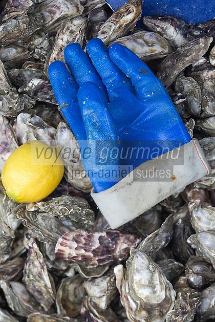 France, Ille-et-Vilaine (35), Côte d'Emeraude, Cancale, marché aux huîtres sur le port de la Houle  //  France, Ille et Vilaine, Cote d'Emeraude (Emerald Coast), Cancale, oysters market on the harbour