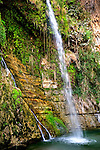 Waterfall in En Gedi, Israel