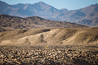 Sandduene im Sonnenuntergang im Death Valley.<br /> 13.6.2017, Death Valley, Kalifornien<br /> Copyright: Christian-Ditsch.de<br /> [Inhaltsveraendernde Manipulation des Fotos nur nach ausdruecklicher Genehmigung des Fotografen. Vereinbarungen ueber Abtretung von Persoenlichkeitsrechten/Model Release der abgebildeten Person/Personen liegen nicht vor. NO MODEL RELEASE! Nur fuer Redaktionelle Zwecke. Don't publish without copyright Christian-Ditsch.de, Veroeffentlichung nur mit Fotografennennung, sowie gegen Honorar, MwSt. und Beleg. Konto: I N G - D i B a, IBAN DE58500105175400192269, BIC INGDDEFFXXX, Kontakt: post@christian-ditsch.de<br /> Bei der Bearbeitung der Dateiinformationen darf die Urheberkennzeichnung in den EXIF- und  IPTC-Daten nicht entfernt werden, diese sind in digitalen Medien nach &sect;95c UrhG rechtlich geschuetzt. Der Urhebervermerk wird gemaess &sect;13 UrhG verlangt.]