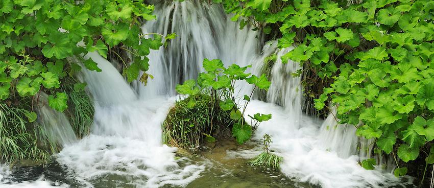 Plitvice National Park, Croatia.<br /> <br /> &copy; Robert Thompson<br /> www.robertthompsonphotography.com