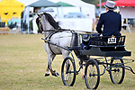 Orsett. United Kingdom. 07 September 2019. Grand ring east. Orsett Horticultural and agricultural show. Essex. UK.~ 07/09/2019.  MANDATORY Credit Garry Bowden/Sport in Pictures - NO UNAUTHORISED USE - 07837 394578