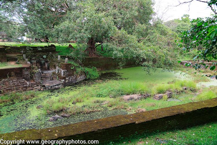 Royal Baths, Island Park, UNESCO World Heritage Site, the ancient city of Polonnaruwa, Sri Lanka, Asia