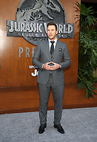 LOS ANGELES, CA - JUNE 12: Chris Pratt, at Jurassic World: Fallen Kingdom Premiere at Walt Disney Concert Hall, Los Angeles Music Center in Los Angeles, California on June 12, 2018. Credit: Faye Sadou/MediaPunch