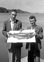 Fishermen at Ross caslte, Kilalrney with a massive b rown trout caught on Lough Lein in 1954.<br /> Picture by Harry MacMonagle