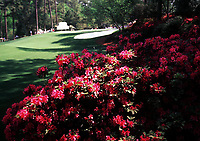 4th April 1999, Augusta GA, USA; The US Masters Golf Course Augusta USA