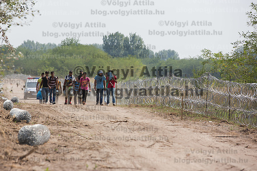 Illegal migrants walk under police custody next to a NATO barbed wire fence built to stop illegal migrants entering on the green border between Serbia and Hungary near Asotthalom (about 190 km South of capital city Budapest), Hungary on August 13, 2015. ATTILA VOLGYI