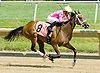 Cofachiqui winning at Delaware Park on 6/29/11