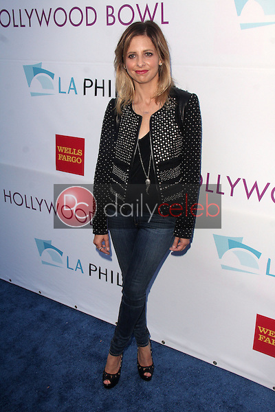 Sarah Michelle Gellar<br /> at the Hollywood Bowl Opening Night and Hall Of Fame Ceremony, Hollywood Bowl, Hollywood, CA 06-21-14<br /> David Edwards/DailyCeleb.com 818-249-4998