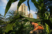 A farmer grows corn in southwestern China next to tall buildings in an area that was entirely rural only a few years ago.  <br /> <br /> China is pushing ahead with a dramatic, history-making plan to move 100 million rural residents into towns and cities over the next six years.<br /> <br /> Moving farmers to urban areas is touted as a way of changing China&rsquo;s economic structure, with growth based on domestic demand for products instead of exporting them.