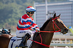 SHA TIN, HONG KONG – December 8: , Triple Triple ridden by Joao Moreira wins the Jim And Tonic Handicap on Longines Hong Kong International Race Meeting at Sha Tin Racecourse in Hong Kong. Michael McInally/Eclipse Sportswire/CSM