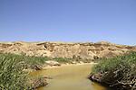 Israel, Negev, Ein Zin in Wadi Zin
