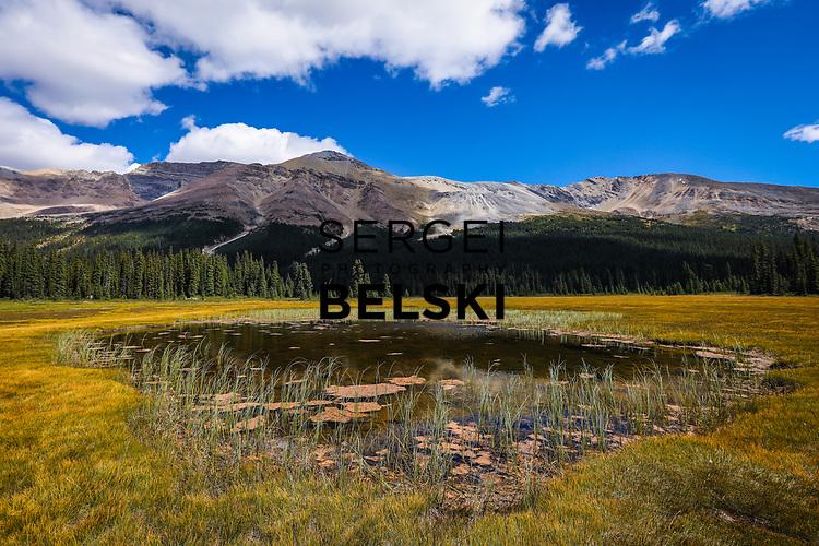 Peyto Lake Photo Trip. Photo Credit: Sergei Belski