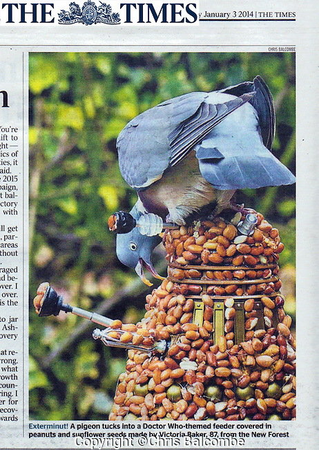 EXTERMI-NUT!!<br />