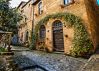 Civita di Bagnoregio building with Arching trellis