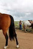USA, Wyoming, Encampment, a cowboy gets ready to round up cattle, Big Creek Ranch