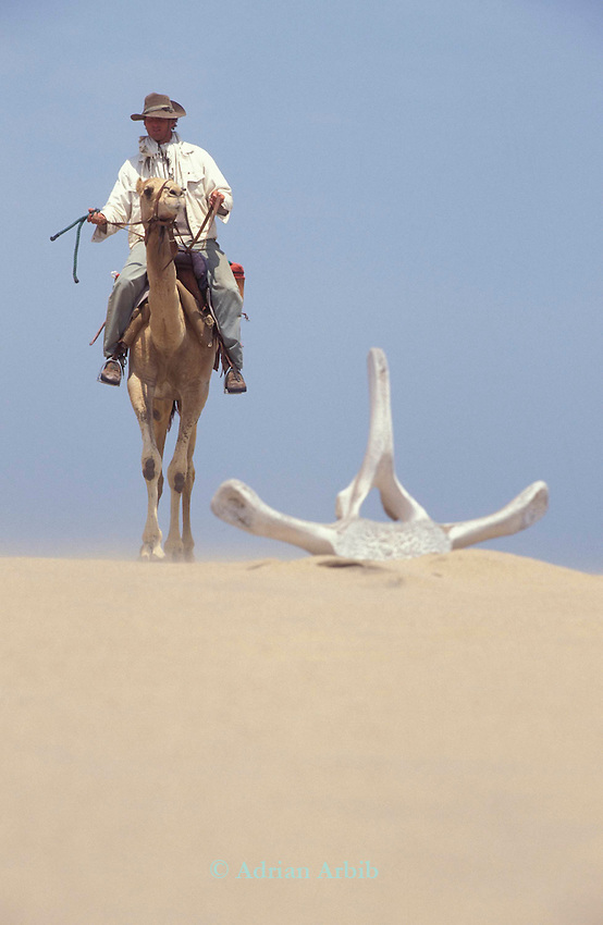 Benedict Allen passing a  stranded whale bone  on a sand  dune during his   crossing the Namib Naukluft  desert in Namibia.