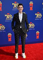 SANTA MONICA, USA. June 16, 2019: Noah Schnapp at the 2019 MTV Movie & TV Awards at Barker Hangar, Santa Monica.<br /> Picture: Paul Smith/Featureflash