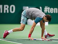 11-02-14, Netherlands,Rotterdam,Ahoy, ABNAMROWTT, Grigor Dimitrov(BUL)falls<br /> Photo:Tennisimages/Henk Koster