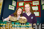 Hanna Ni Coileain and Eimear Nic Eoin with their project Leasu Organach as Sliogeisc at the annual SciFest Science and Technology Fair held in the ITT on Tuesday.