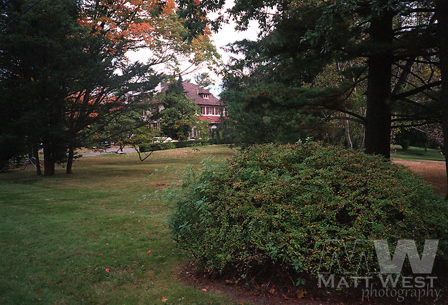 10/23/1998 The area where Martha Moxley's body was found.   The Moxley residence in 1975 can be seen in the background. Staff photo by Matt West