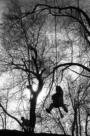 Kids swinging on swing.<br />