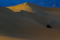 Mesquite Flats Sand Dunes in Death Valley National Park.