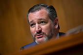 United States Senator Ted Cruz (Republican of Texas) speaks during the Subcommittee on the Constitution on Capitol Hill in Washington D.C., U.S. on July 16, 2019.<br /> <br /> Credit: Stefani Reynolds / CNP