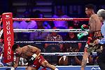 Frank Banevidez venció por KO en el primer asalto a Frank Rojas. MGM Grand, Las Vegas, Nevada, USA.
