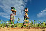 Two young women walk along a road near Thekerani, in southern Malawi.