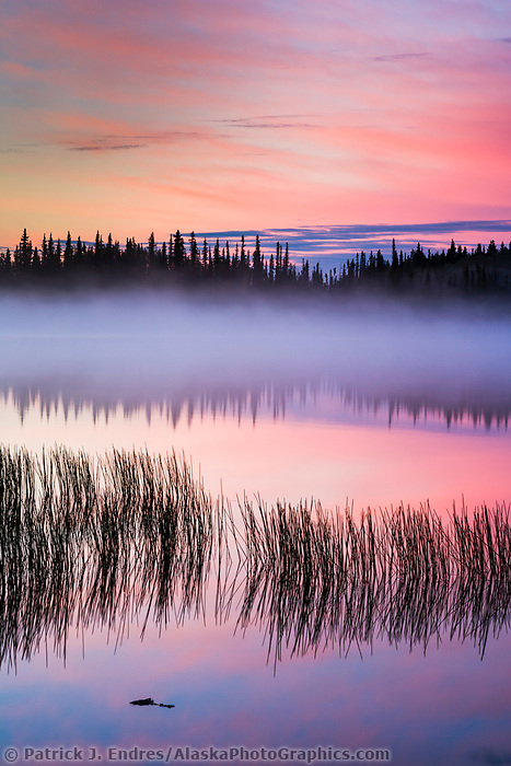 Morning fog at sunrise over Willow lake, southcentral, Alaska.