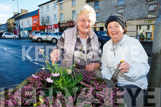 Sheila Hannon and Mary Walsh from Castleisland Tidy Towns committee who are appealing for new volunteers