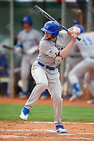 Central Connecticut State Blue Devils left fielder Mitch Guilmette (12) at bat during a game against the North Dakota State Bison on February 23, 2018 at North Charlotte Regional Park in Port Charlotte, Florida.  North Dakota State defeated Connecticut State 2-0.  (Mike Janes/Four Seam Images)