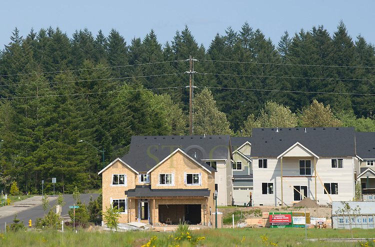 Building Homes in Subdivision